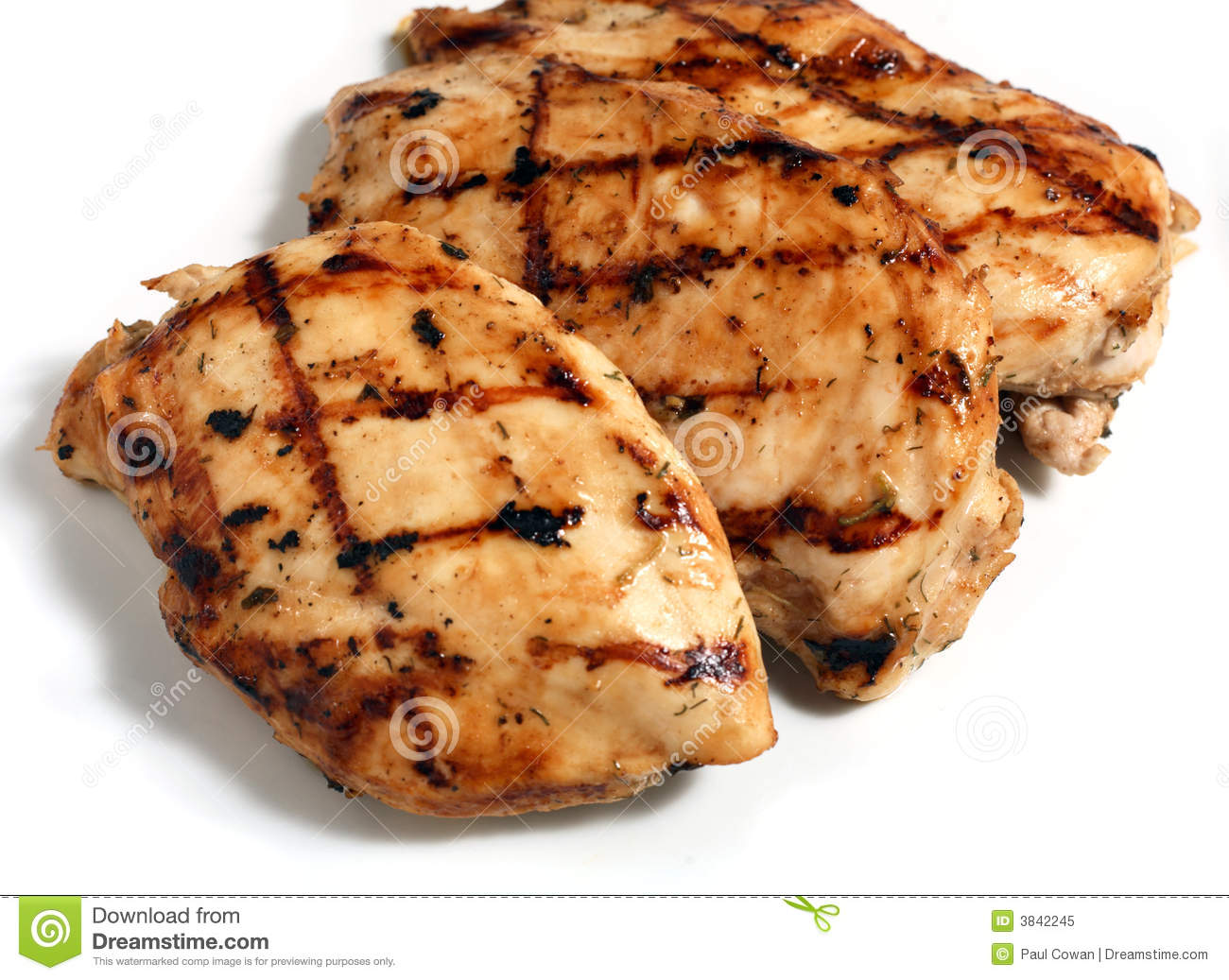 Grilled Chicken Meat Steaks Royalty Free Stock Photo   Image  3842245