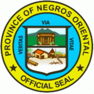 Navy Official Seal Of San Carlos City Negros Occidental Official Seal