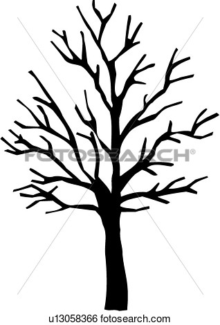 Sugar Maple Tree Varieties Winter   Fotosearch   Search Clipart