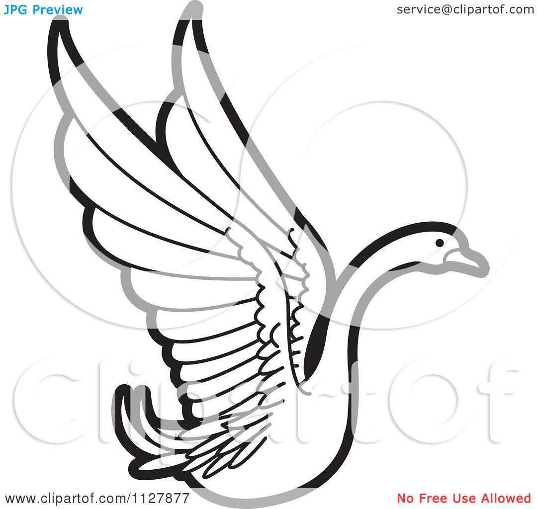 Swan Clipart - Clipart Kid