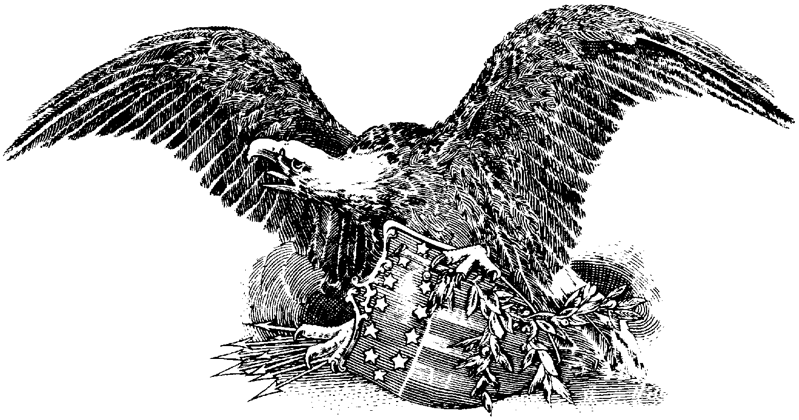 American Eagle Clip Art Black And White Images   Pictures   Becuo