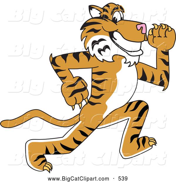 microsoft clip art tiger - photo #32