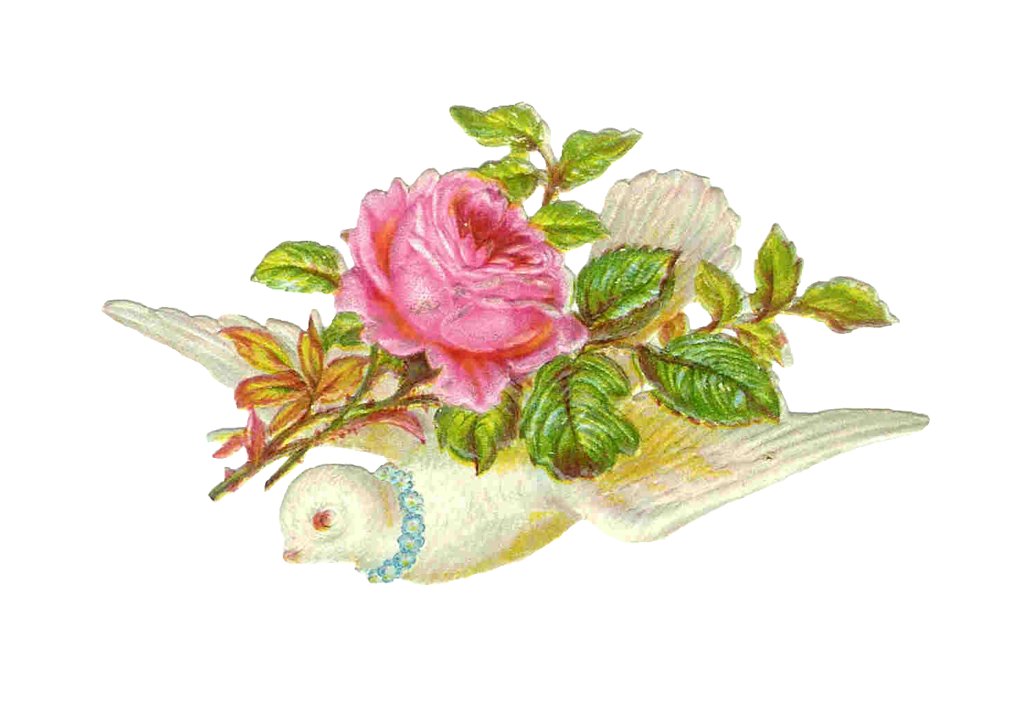 Vintage Victorian Die Cut  Clip Art Of Bird Dove Carrying A Pink Rose