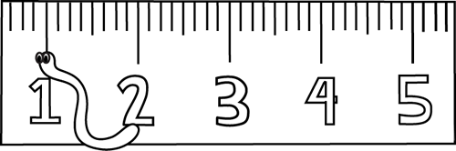 An Inch Worm In Front Of A Ruler  Great For The Short I Vowel Sound