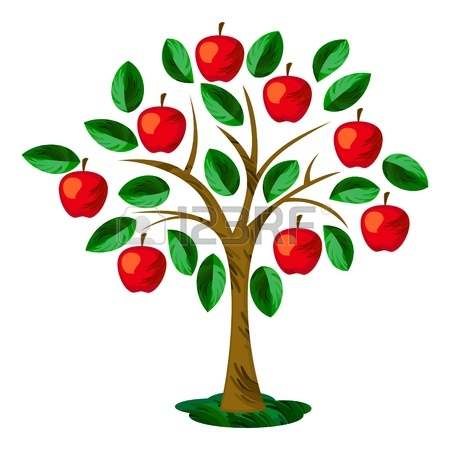 Apple Tree Illustration 18845688 Isolated Apple Tree With Leaves And