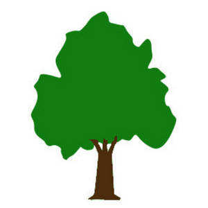 Small Tree Clipart - Clipart Suggest