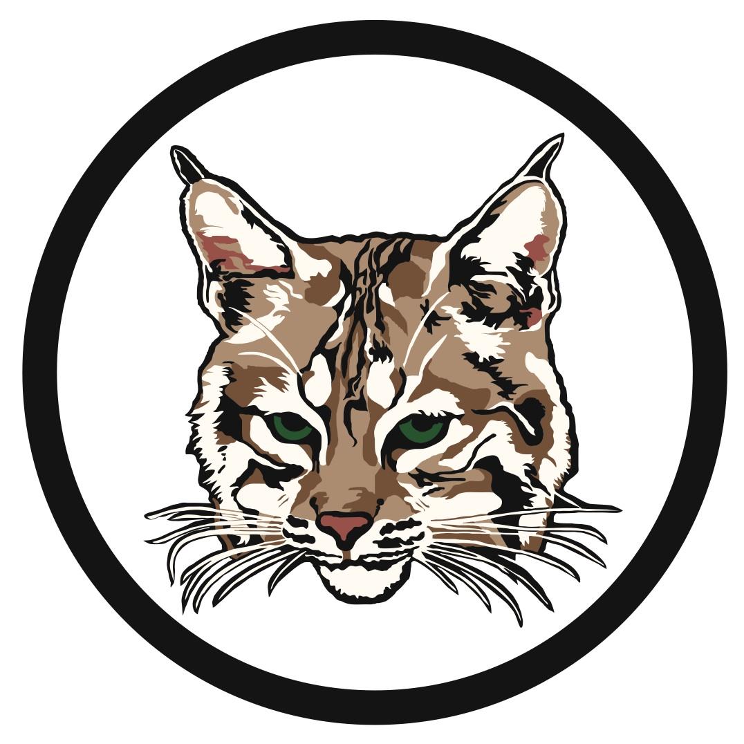 bobcat mascot clipart clipart suggest Baby Bobcat Clip Art Baby Bobcat Clip Art