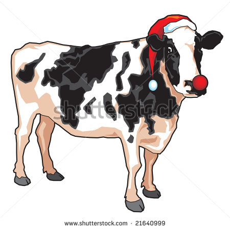Christmas Cow Stock Photos Images   Pictures   Shutterstock