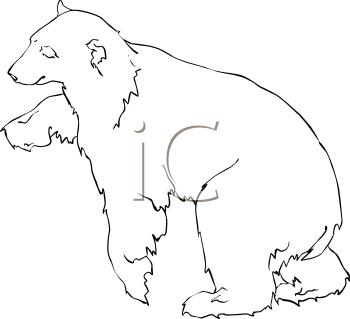 Royalty Free Polar Bear Clip Art Bear Clipart