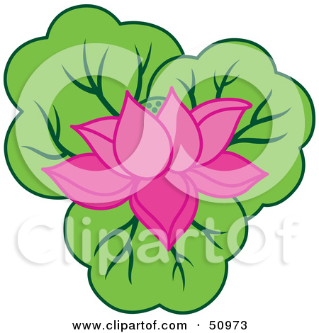 pink water lily flower clip art � cliparts