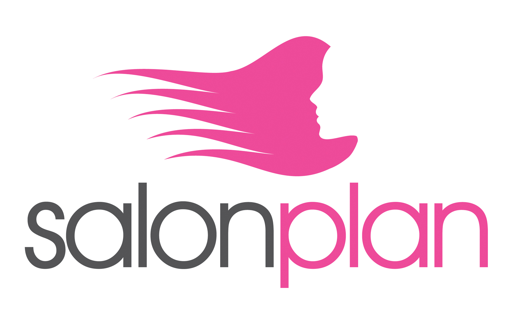 Salon Plan Makes Salon Style Guilt Free   The Salon Magazine