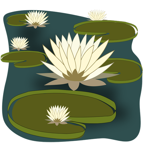 Water Lily Clip Art   Images   Free For Commercial Use