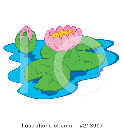 Water Lily Clip Art More Clip Art Illustrations Of
