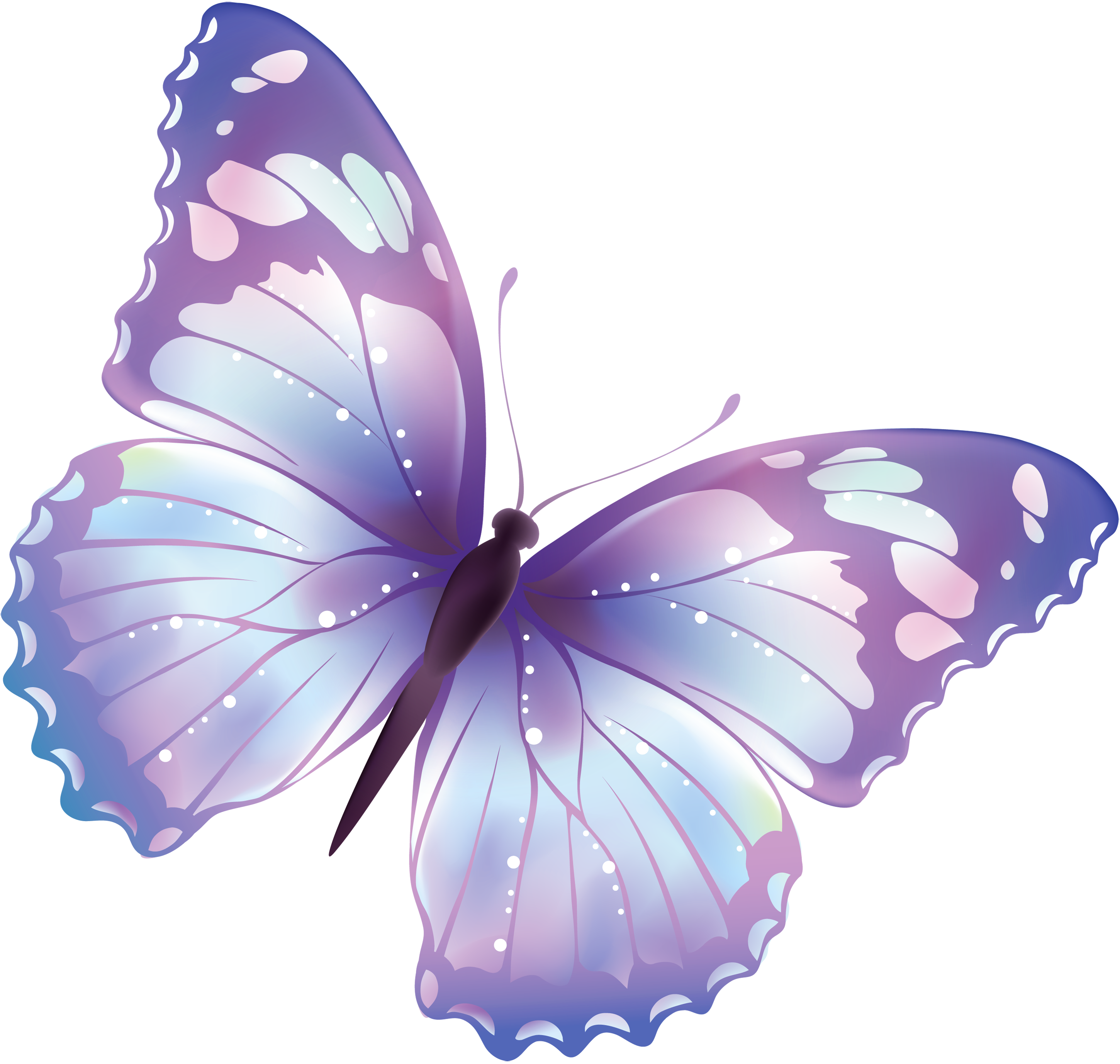 Flying Butterfly Png Image   Flying Butterfly Png Image