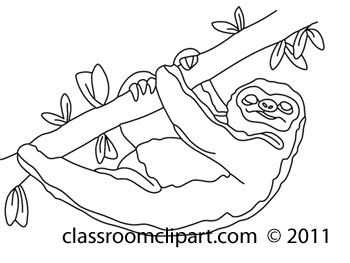 Animals   711 Sloth 38bw   Classroom Clipart