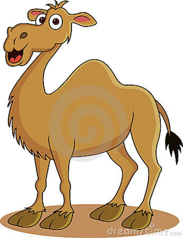 Cartoon Camel Clipart - Clipart Kid