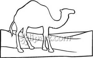 Camel Outline Clipart - Clipart Kid