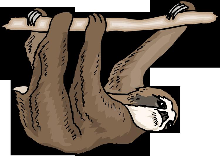 Clip Art Sloth Clipart sloth clipart kid clipart