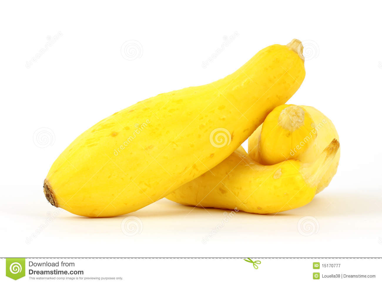 Small Yellow Summer Squash Royalty Free Stock Photography   Image