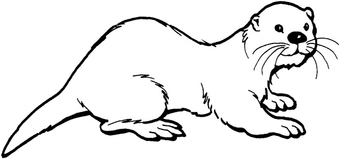 Clip Art Otter Clip Art cute images of an otter clipart kid coloring page 54015 jpg