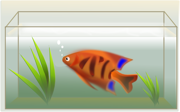 Fish Tank Clip Art At Clker Com   Vector Clip Art Online Royalty Free