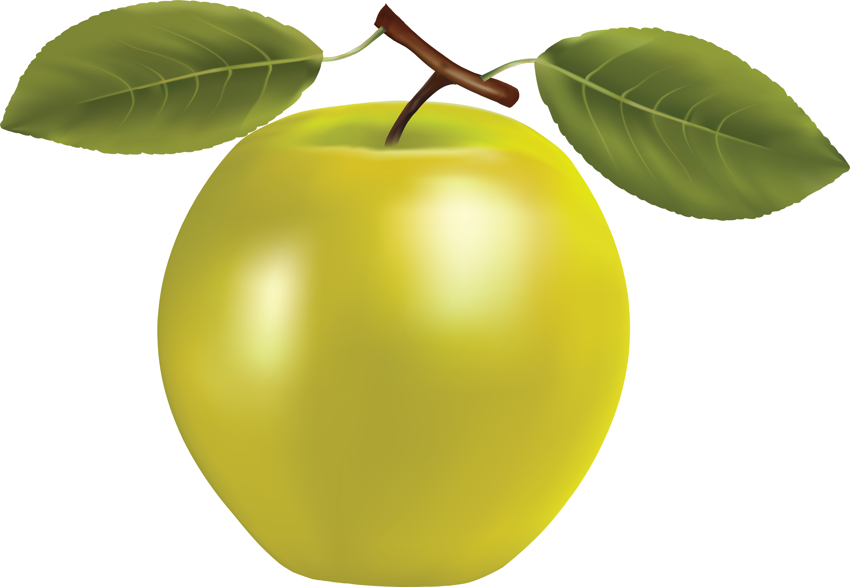 Yellow Png Apple Image Free Apple Png Picture Clipart   Yellow Png