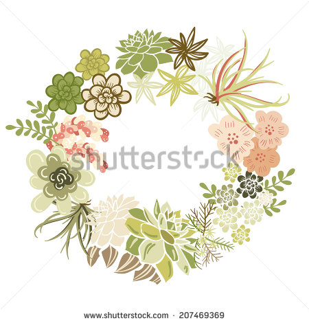 Floral Frame  Cute Succulents Arranged Un A Shape Of The Wreath