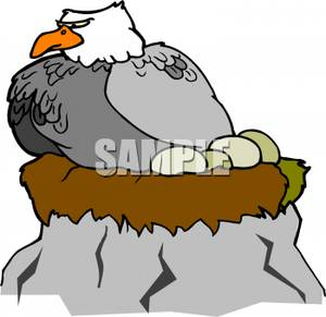 An Eagle On Its Nest Clipart Picture