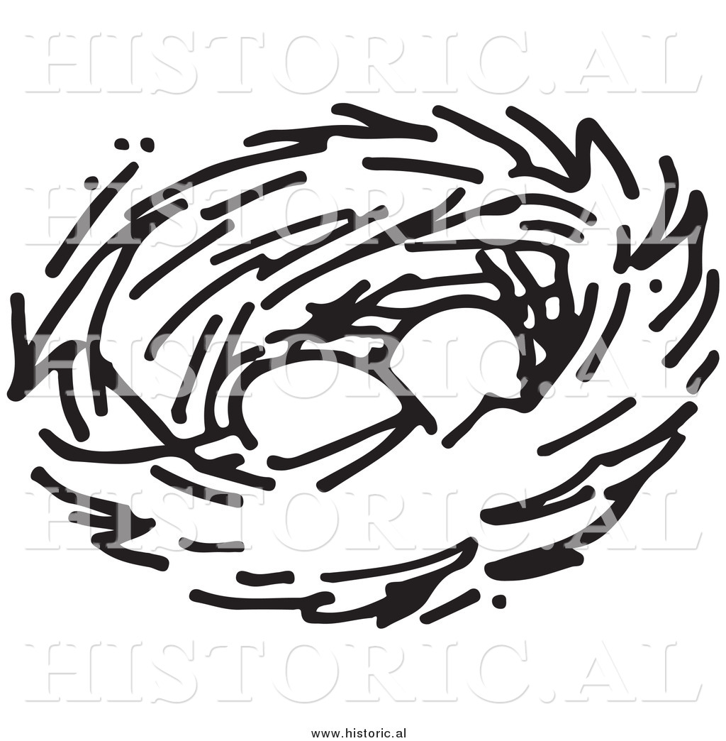 Clipart Of Two Eggs In A Bird Nest   Black And White Drawing By Al