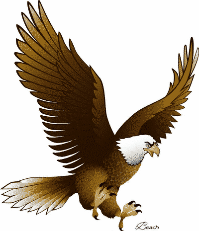 Eagle Nest Clipart Black And White   Clipart Panda   Free Clipart
