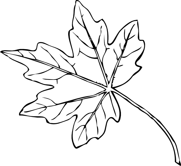 Maple Leaf Clip Art At Clker Com   Vector Clip Art Online Royalty