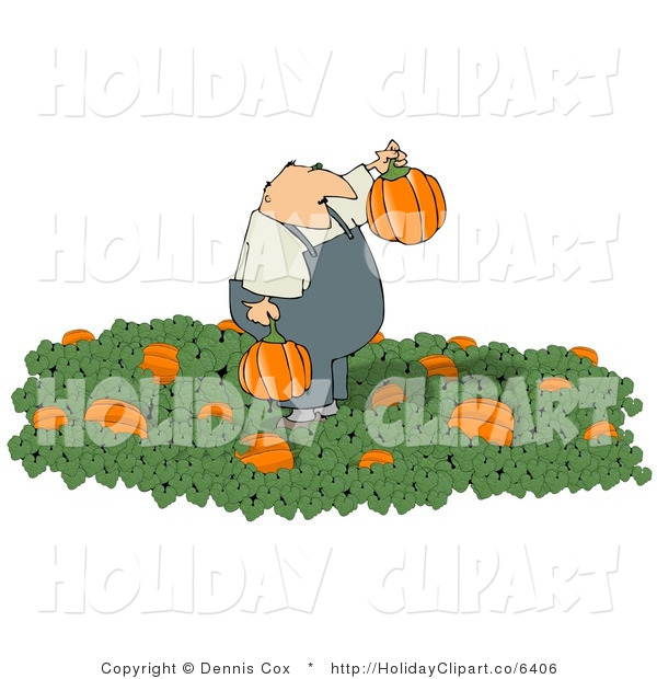 Clip Art Of An Obese Farmer Picking Halloween Pumpkins From A Pumpkin