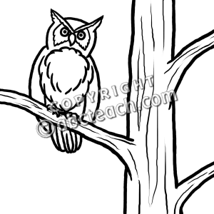 Clip Art  Owl Perched In Tree  B W    Fall   Illustration   Preview 1