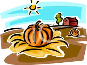 Pumpkin In The Patch On A Farm Clipart Picture