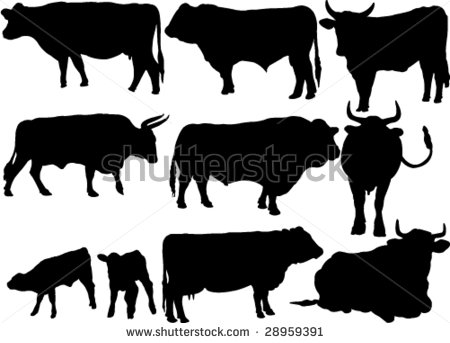 Cattle Collection Silhouettes Stock Vector Illustration 28959391