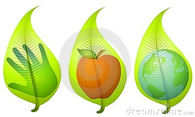 An Illustration Featuring Your Choice Of 3 Leaf Graphics Each With An