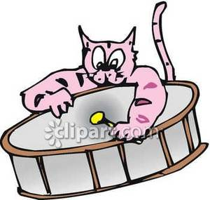 Cat Playing A Drum Royalty Free Clipart Picture