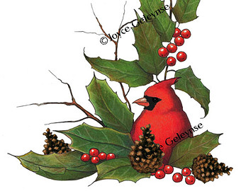 Freehand Clip Art  Cardinal Birdch Ristmas Holly Berries Pine Cones