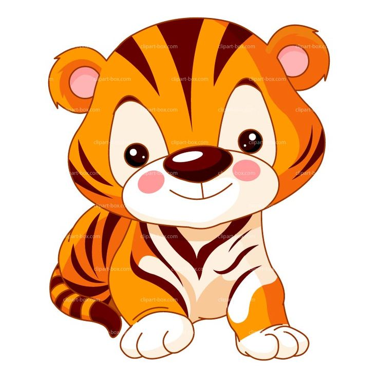 Cute Tiger Clip Art   Clipart Cute Baby Tiger   Royalty Free Vector