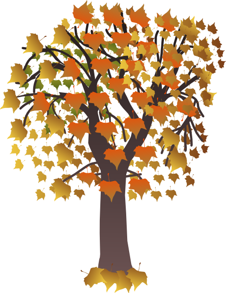 Maple Tree Clip Art At Clker Com   Vector Clip Art Online Royalty