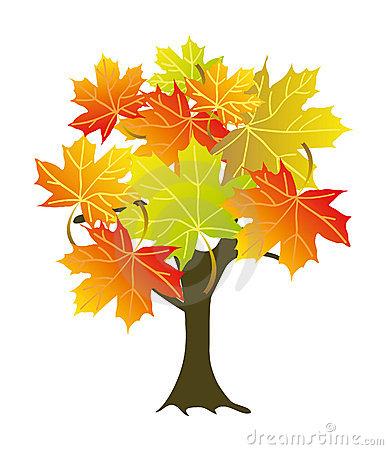 Sugar Maple Tree Clipart