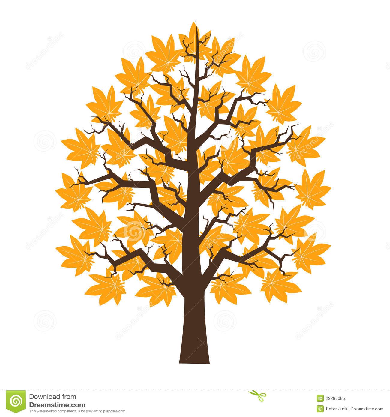 Cartoon maple tree