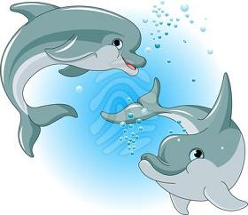 Dolphins Dolphins Are Related To Whales And Porpoises Dolphins Are