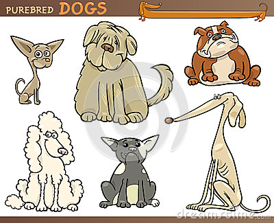 Greyhound Cartoons Greyhound Pictures Illustrations And Vector Stock