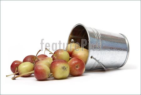 Spilled Apples Picture  Photo To Download At Featurepics Com