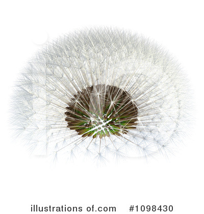 Dandelion Clipart  1098430 By Leo Blanchette   Royalty Free  Rf  Stock