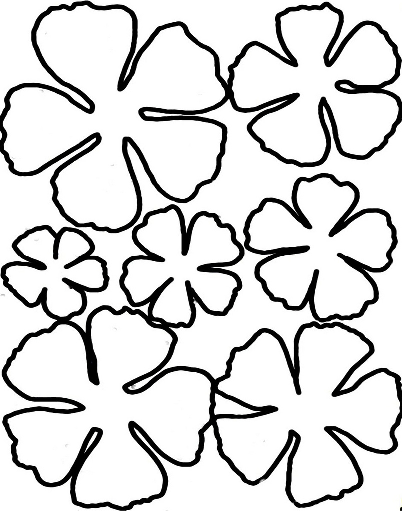 10 Printable Flower Petal Template Pattern Free Cliparts That You Can