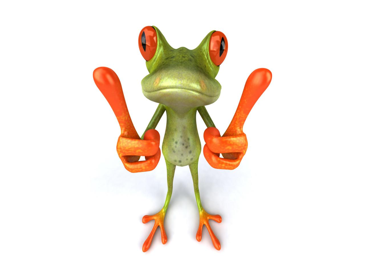 Frog Wallpaper Download Free Widescreen Hd Cute  3540  Animal