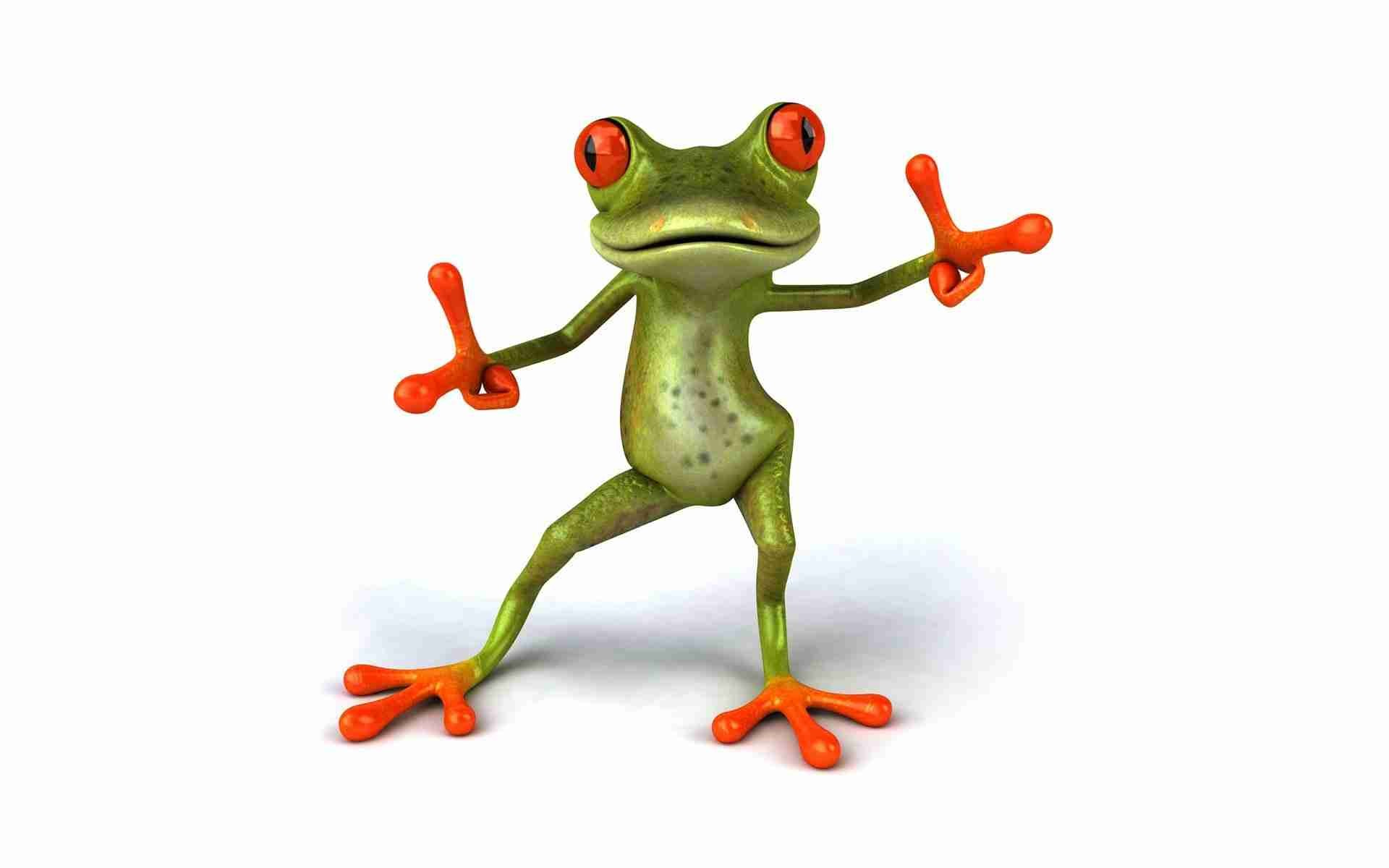 Funny Baby Animals Wallpapers Colorful Frog Cute Frogs Picture