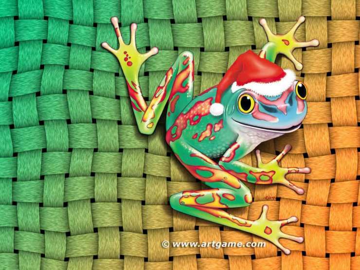 Santa Frog   Animals   Wallpaper   Christmas Wallpapers Free Clipart